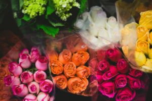 Verschiedene Rosen - Es ist trotzdem Vorsicht bei der Farbe geboten